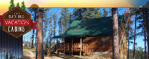 Black Hills Vacation Cabins image